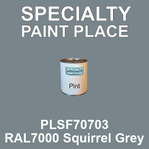 PLSF70703 RAL7000 Squirrel Grey - IFS pint