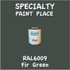 RAL 6009 Fir Green Pint Can