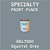 RAL 7000 Squirrel Grey Pint Can