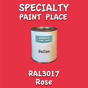 RAL 3017 Rose Gallon Can